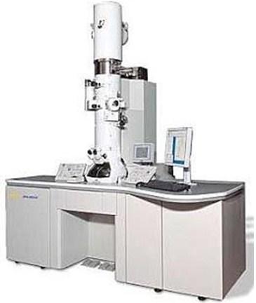 Gambar Mikroskop Elektron
