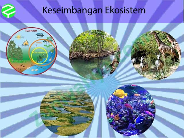 Keseimbangan Ekosistem-Pengertian, Gangguan, Komponen, Dan ...