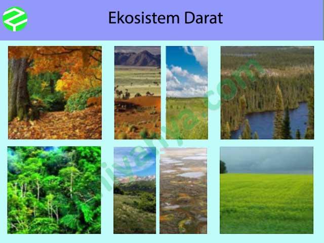 Ekosistem Darat
