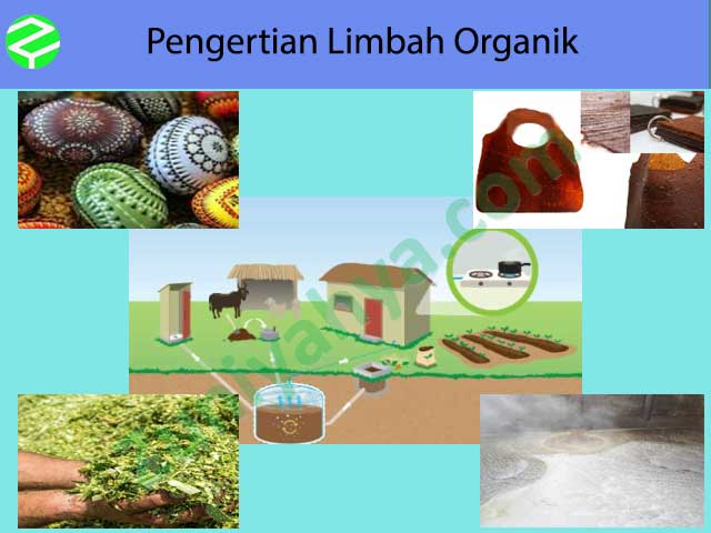 Pengertian Limbah Organik