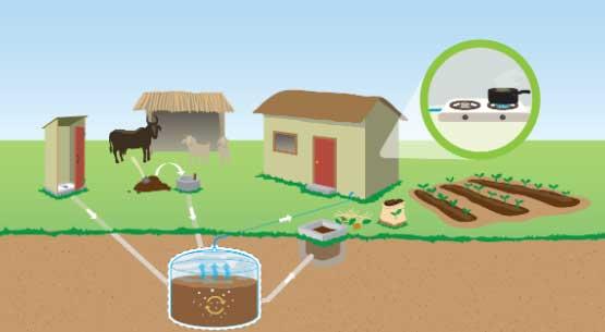 Pengolahan Limbah Hewan dan Manusia Sebagai Biogas